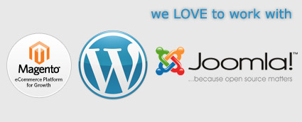 Joomla, CMS customization